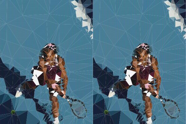 Serena Williams wint haar eerste toernooi in meer dan drie jaar.